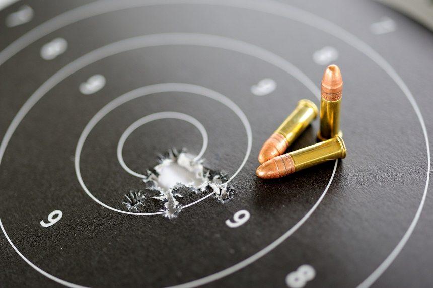 22 LR Target Practice Caliber