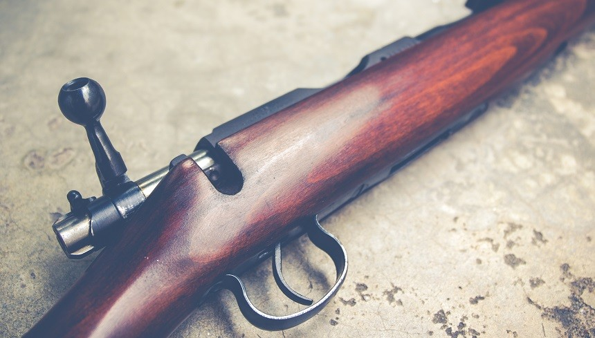 22 LR for Survival Situations