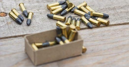 Best 22 Pistols For Survival & Self Defense Handguns