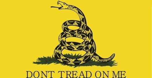 Don't Tread on Me Gadsden Snake Flag
