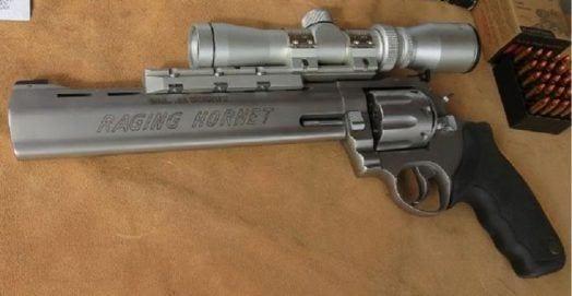 .22 Hornet Gun
