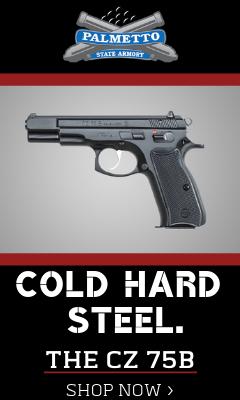 palmetto state armory 9mm pistol
