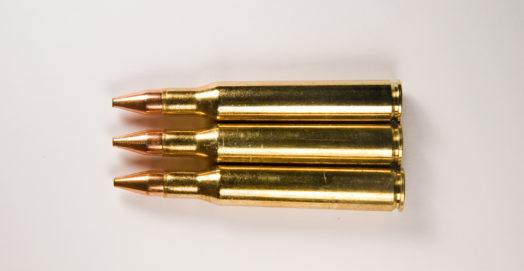 .300 Winchester Mag review