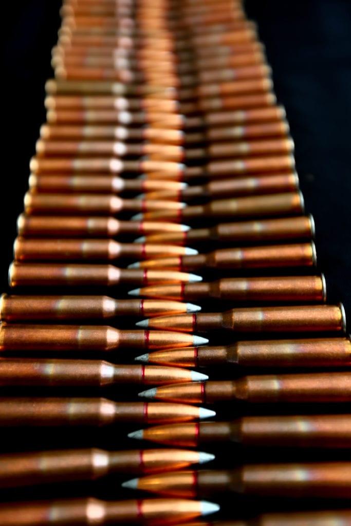 bulk ammo .308