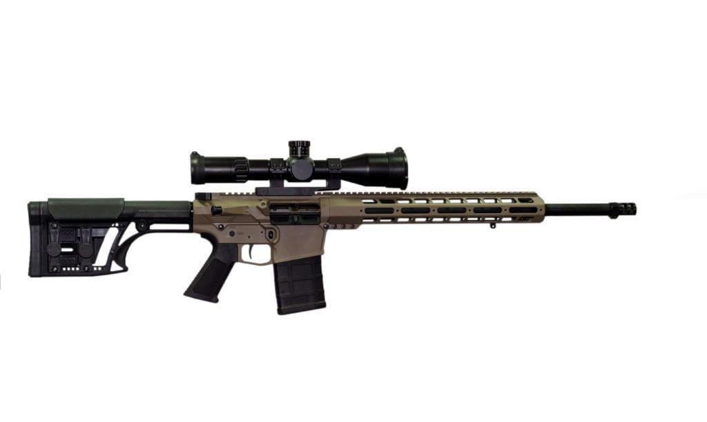 AR10 DMR